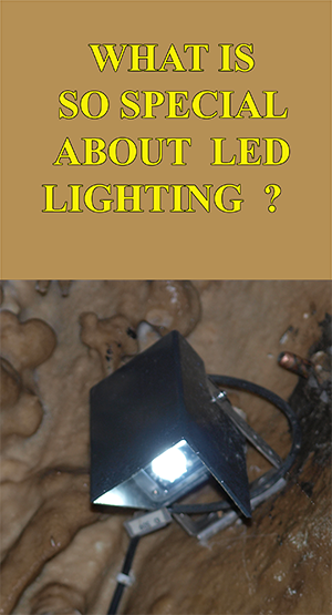 LED lampa-web